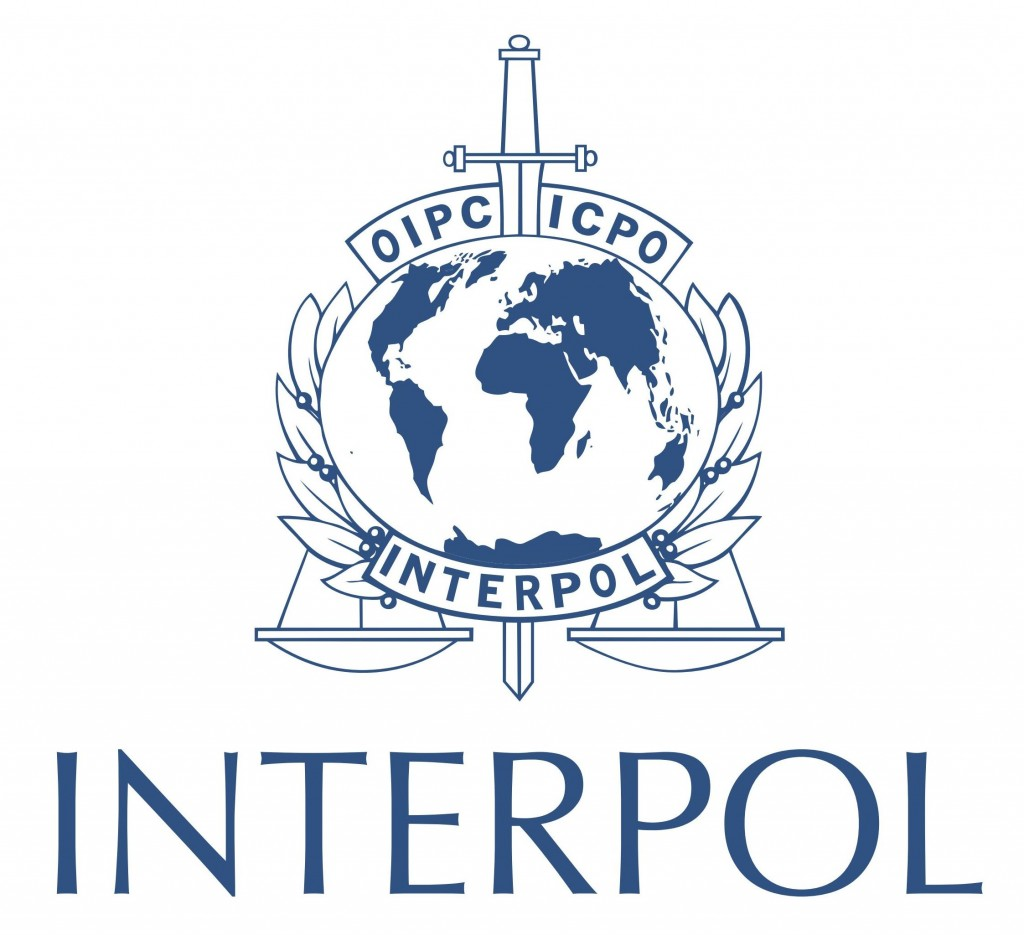 Interpol-led Operation Sees Over 20,000 Domain Names Seized For Selling Counterfeit Goods